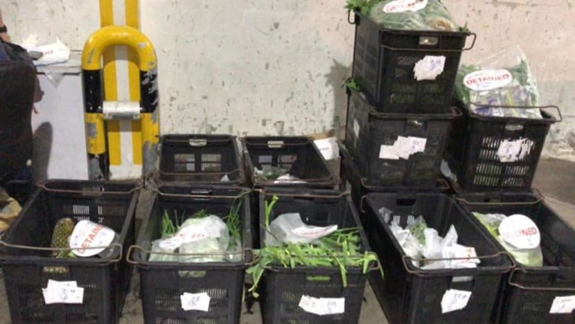 Company fined S$6,000 for illegally importing fruits, vegetables and processed food