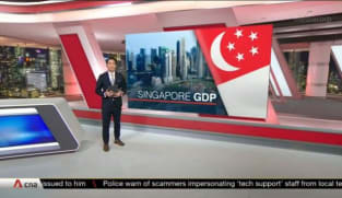 Singapore's GDP grows at slower pace of 6.5% in the third quarter: Advance estimates   Video