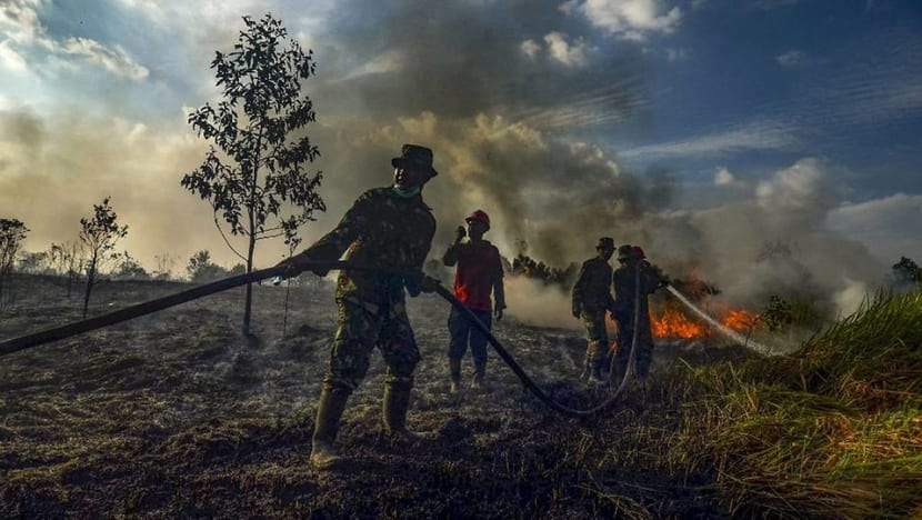 Riau blanketed in haze as peat fire spreads