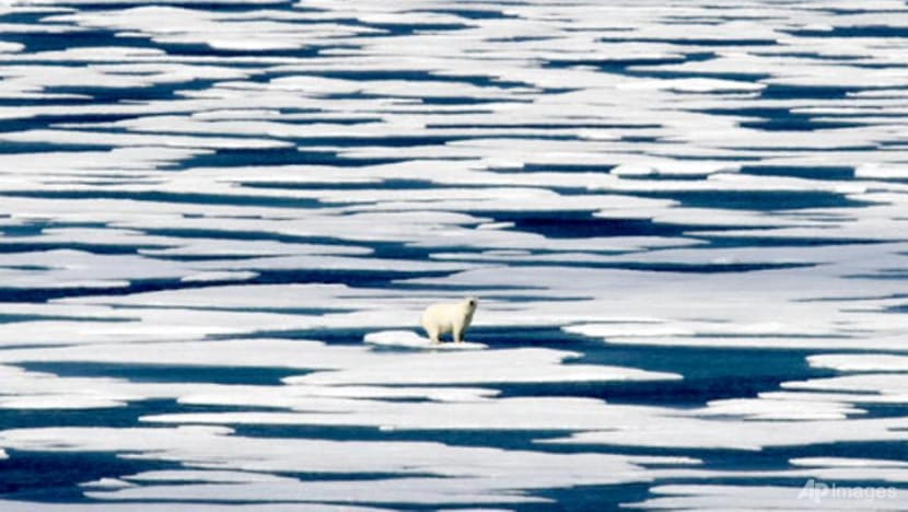 Irreversible warming tipping point possibly triggered: Arctic mission chief