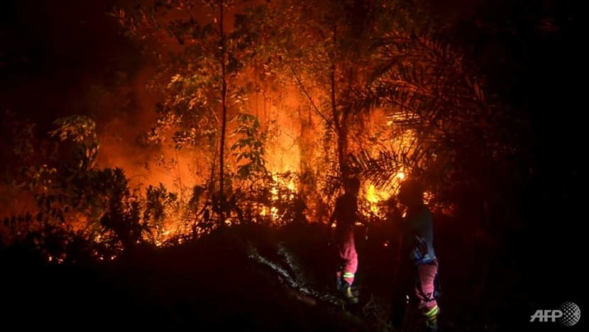 COVID-19 hampers Indonesia's fight against forest fires as haze season looms