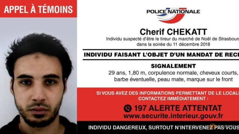 Strasbourg gunman shot dead by French police