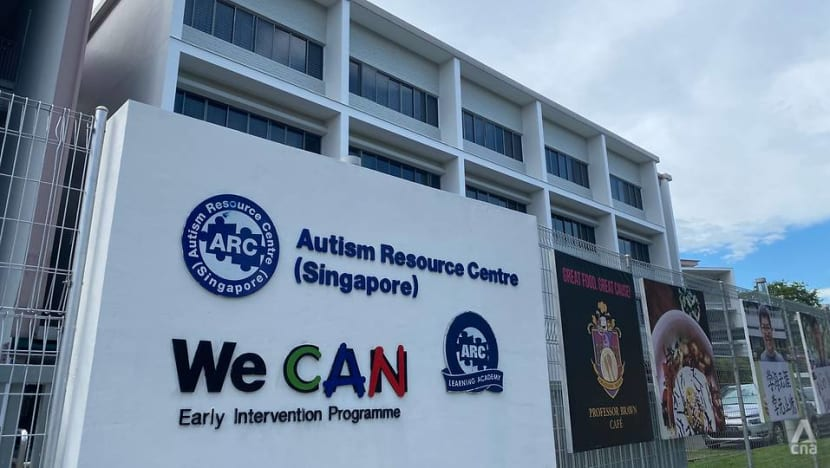 Independent living, employment among focus of Singapore's first master plan for people with autism