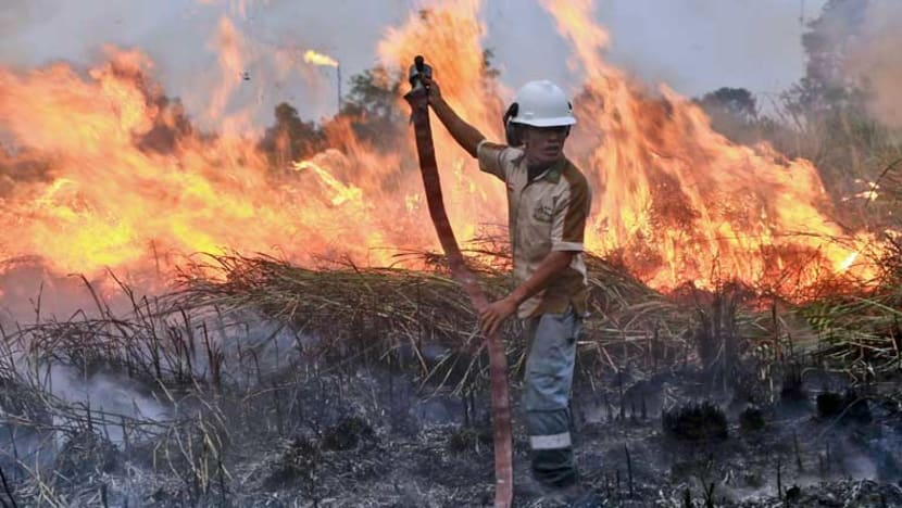 Indonesian Supreme Court declares Jokowi among those liable for 2015 forest fires resulting in regional haze: Reports