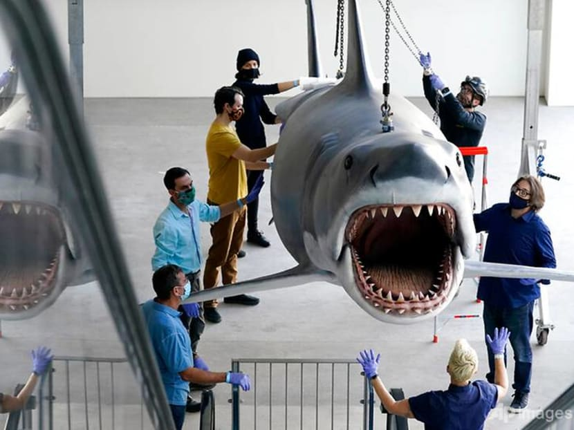 Bruce, the last shark from the film Jaws, docks at the Academy Museum