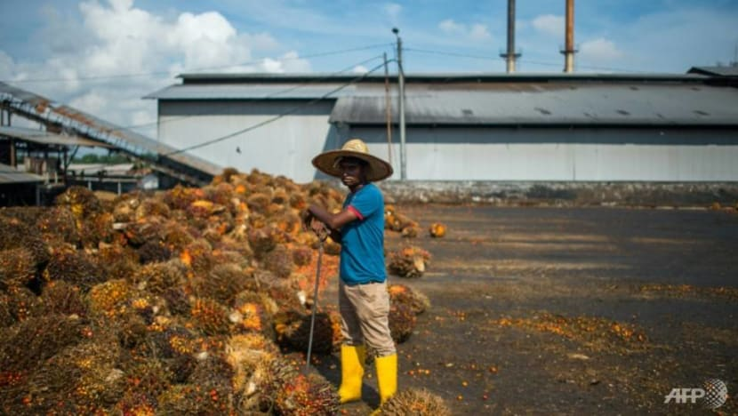 Malaysia could curb French purchases if palm oil use is restricted