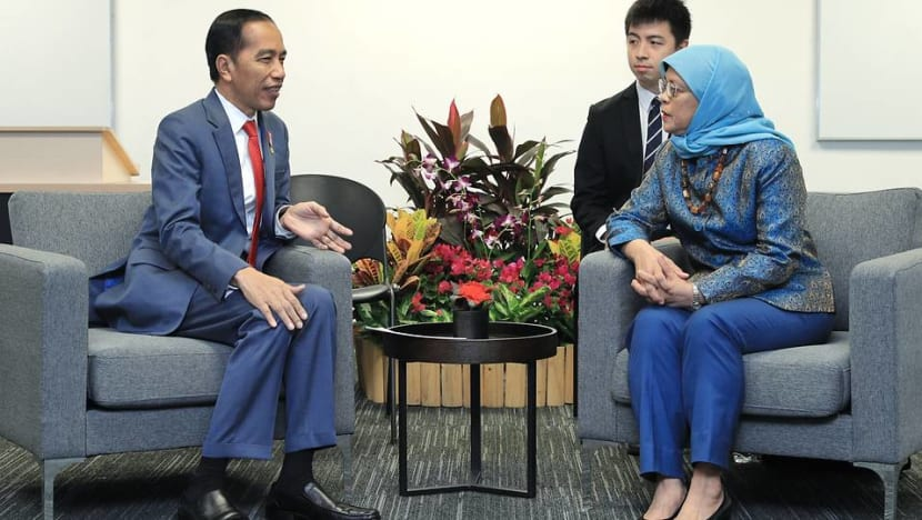 Singapore, Indonesia presidents reaffirm 'excellent relations' between both countries