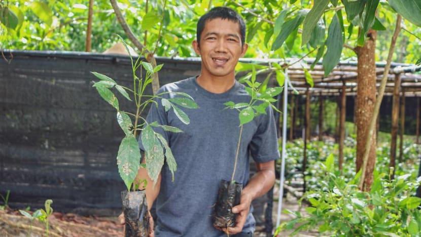 Klinik kesehatan ini alasan sejumlah masyarakat Kalimantan hentikan pembalakan liar