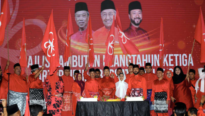 Bersatu rejects Mahathir's resignation as party chairman