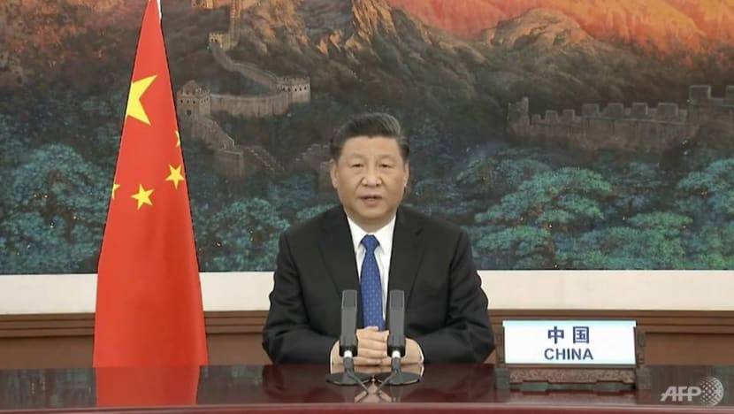 China's Xi says supports WHO probe, pledges US$2 billion to deal with COVID-19
