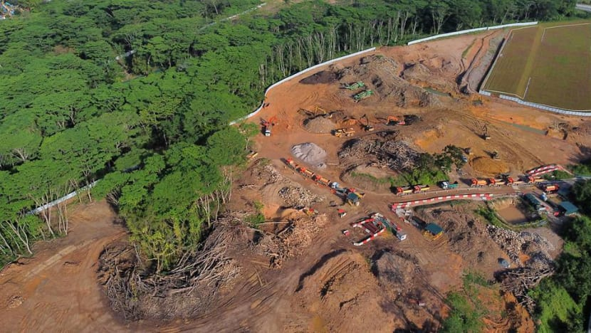 Land earmarked for Agri-Food Innovation Park in Kranji 'erroneously' cleared: JTC
