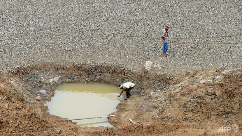 Preserve, revive, restore: Indian ponds spring back to life