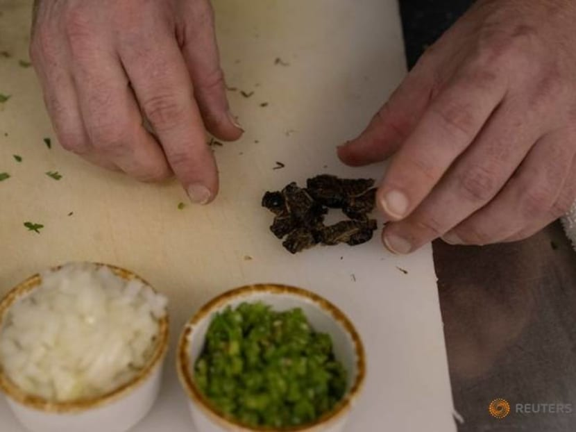 Guess who's coming to dinner? Virginia chef serves up tasty cicada tacos