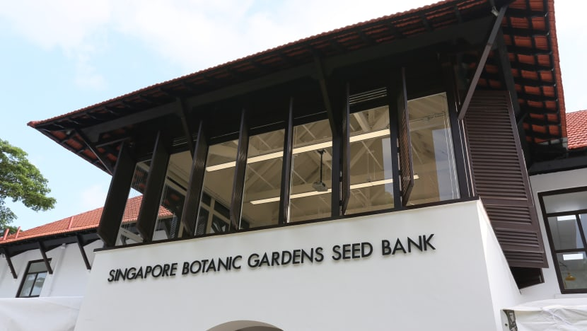 Singapore opens first seed bank to protect regional plant diversity against climate change