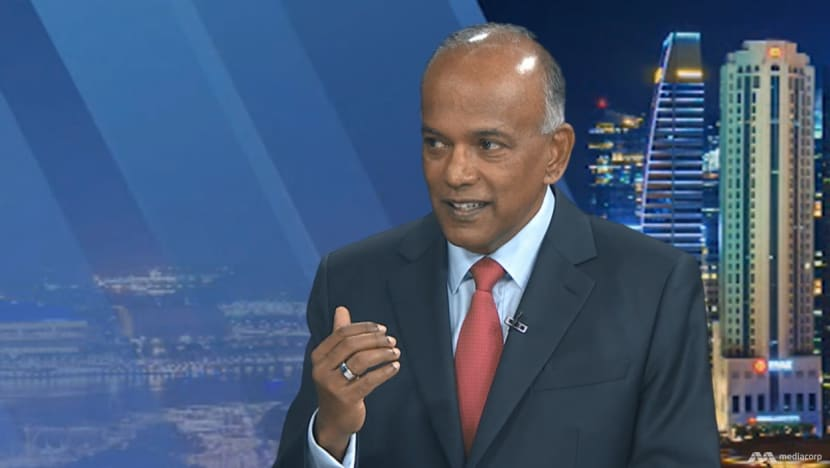Employment should depend on competence and suitability, not skin colour: Shanmugam