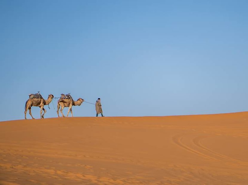 A Moroccan dream: From glamping in the Sahara to chaos in the souks