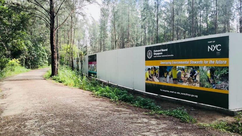 OBS to 'carefully plan' construction of new Coney Island campus to minimise environmental impact