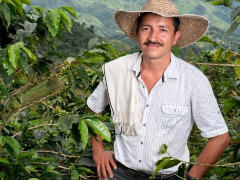 Reviving fragile coffee regions with Nespresso – a journey of hope, restoration and sustainability