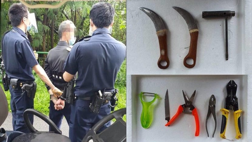 Man arrested for attempted murder of NParks officer along Sungei Serangoon Park Connector