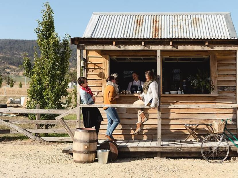 Penguins at night and tipples in the day: This is Australia's whisky capital